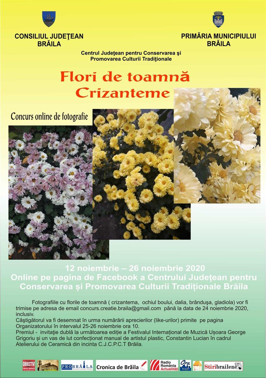 """Concurs online de fotografie """"Flori de toamnă-Crizanteme"""""""
