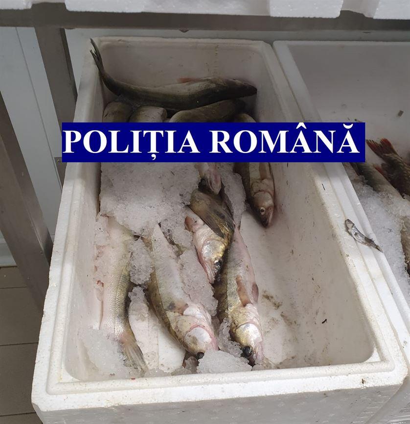 Controale la magazinele care comercializeză pește