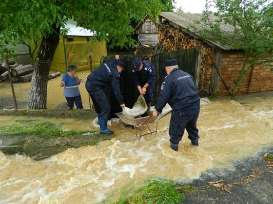 Gospodarii inundate in Insula Mare a Braiei