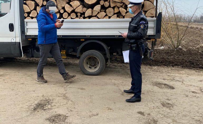 Acțiune a polițiștilor pentru depistarea transporturilor ilegale de material lemnos