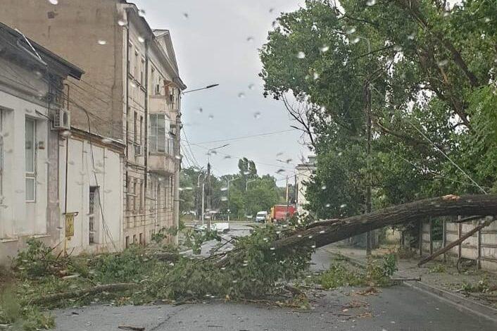 Mașini avariate de crengile rupte de furtună