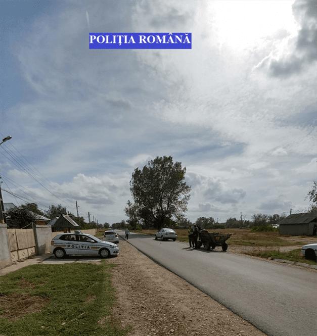 Sase permise de conducere retinute si 1.700 kg de struguri confiscate de politisti