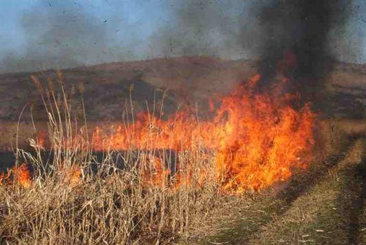 Accident din cauza unui incendiu de vegetatie pe DJ 212