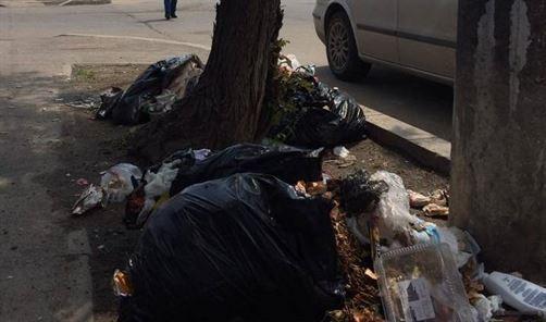 Amenzi de 5250 lei aplicate de Politia Locala pentru depozitarea de gunoi in zone interzise