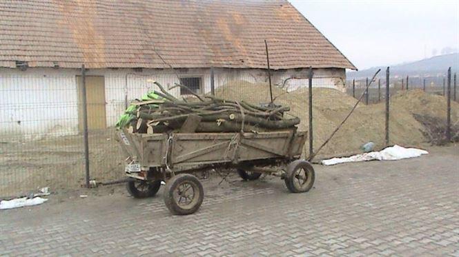 Vindeau lemnele furate dintr-o padure de langa Visani