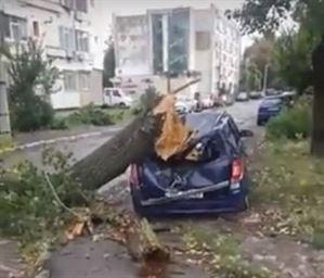 Autoturism distrus de un copac care s-a rupt in timpul furtunii de ieri