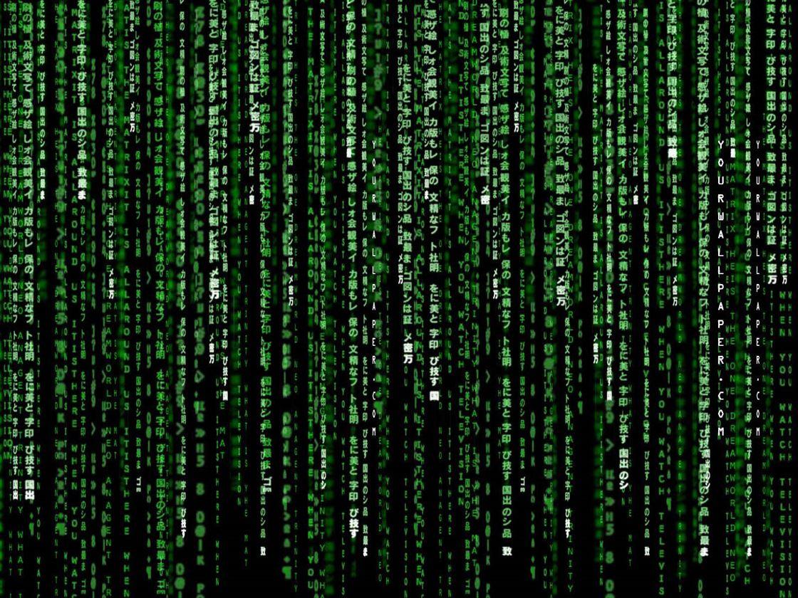 Romania, primul loc in lume dupa durata botilor care afecteaza computerele