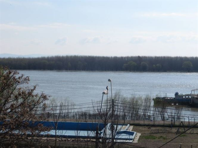 Cod portocaliu pe Dunare, pe sectorul Harsova-Braila