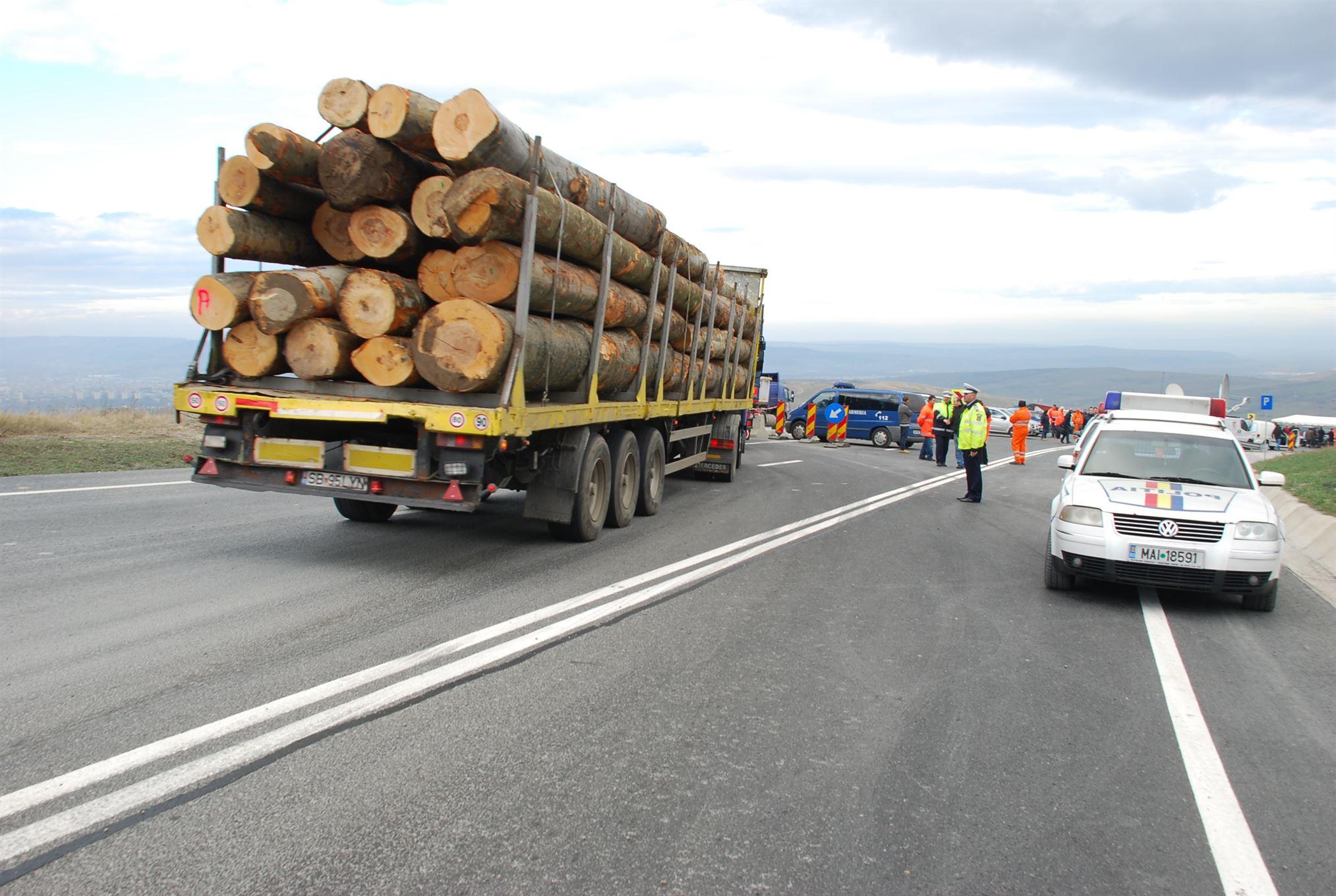 Pana: Un sistem de supraveghere a traseului lemului ar putea reduce furturile cu 70%