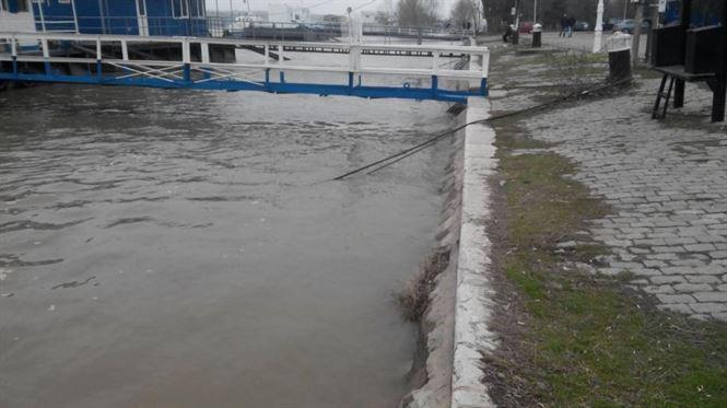 Galerie foto: Dunarea a atins cota de inundatii la Braila