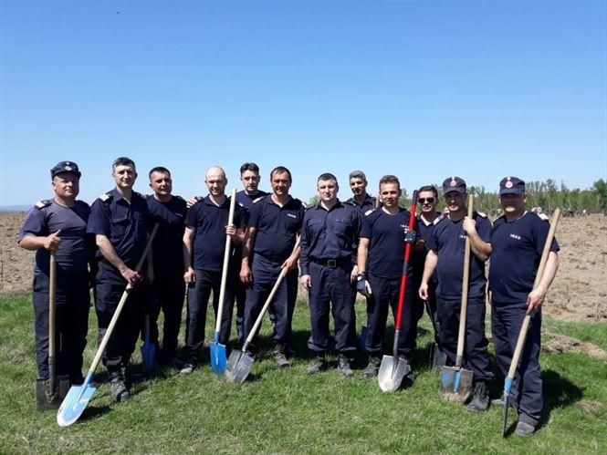 Zece pompieri braileni au participat la campania de plantare de stejari, in memoria celor 335.000 de soldati romani cazuți in Primul Razboi Mondial