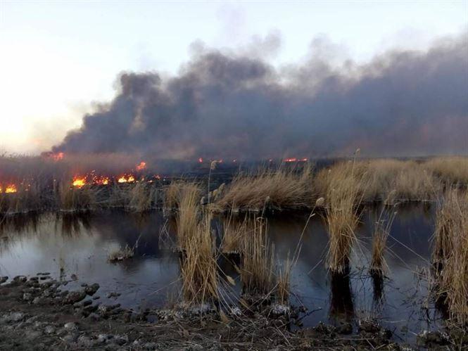 ISU Brăila a intervenit la 14 incendii de vegetație în ultimele 4 zile