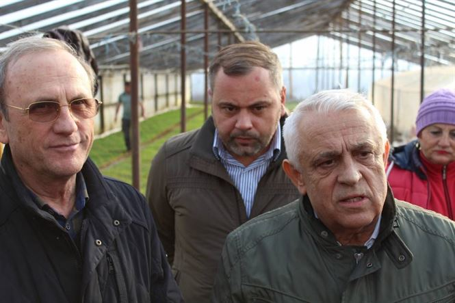Daea: România își poate păstra poziţia de lider în Uniunea Europeană în ceea ce priveşte producţia de porumb