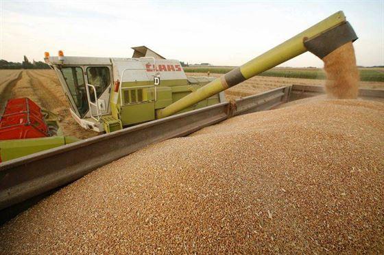 Peste 500 de fermieri trebuie sa restituie banii primiti pentru a infiinta ferme la tara