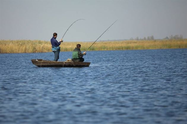 Interzis la pescuit în perioada 11 aprilie-9 iunie, perioada de prohibiție la pescuit comercial în apele care constituie frontieră de stat