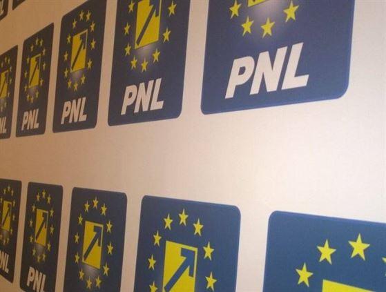 Cine sunt candidatii PNL