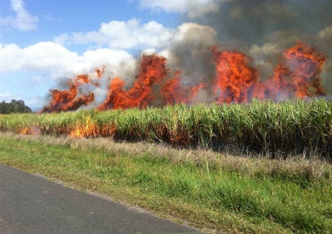 Prevenirea incendiilor pe timpul campaniei de recoltare a cerealelor