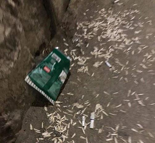 Trei tineri au primit câte 1000 de lei amendă după ce au fost surprinși consumând seminţe de floarea soarelui şi aruncând cojile pe jos