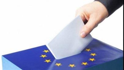 A fost constituit Biroul Electoral de Circumscripție Brăila. Vezi cine sunt candidații brăileni în cursa pentru europarlamentare