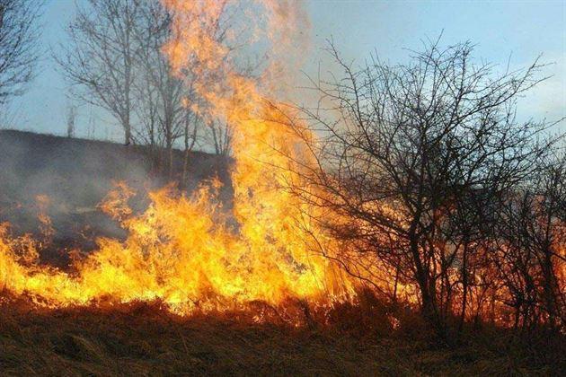 Este interzisa arderea miristilor si a resturilor vegetale pe terenul arabil