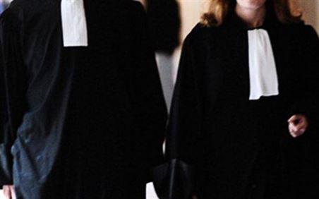 Greva avocati