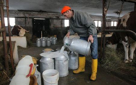 Producatorii agricoli vor avea mari probleme odata cu disparitia cotelor de lapte