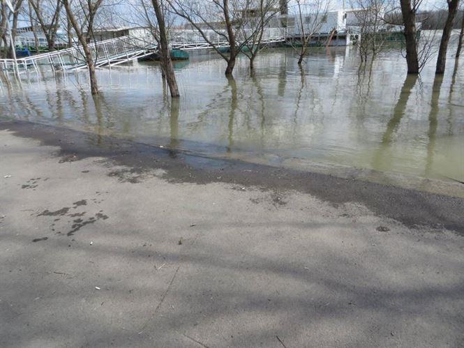 Cotele apelor Dunarii au inceput sa scada in zona Braila