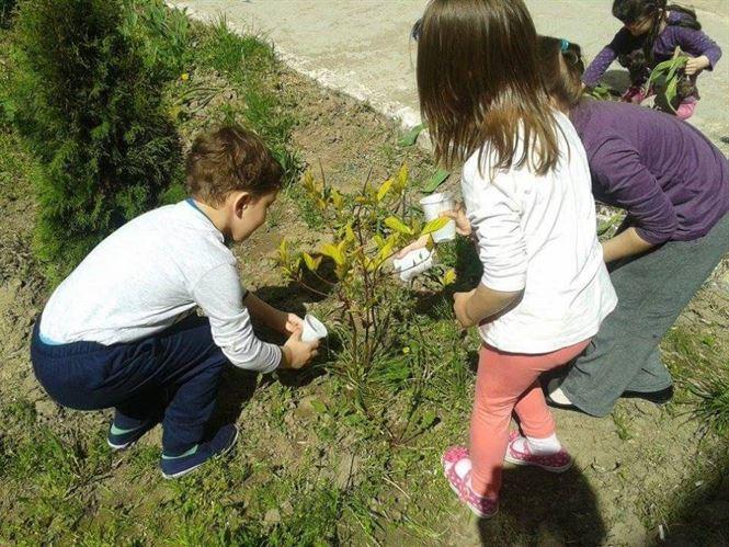 Viitorul verde!  Eco Grădiniţa şi Eco Şcoala