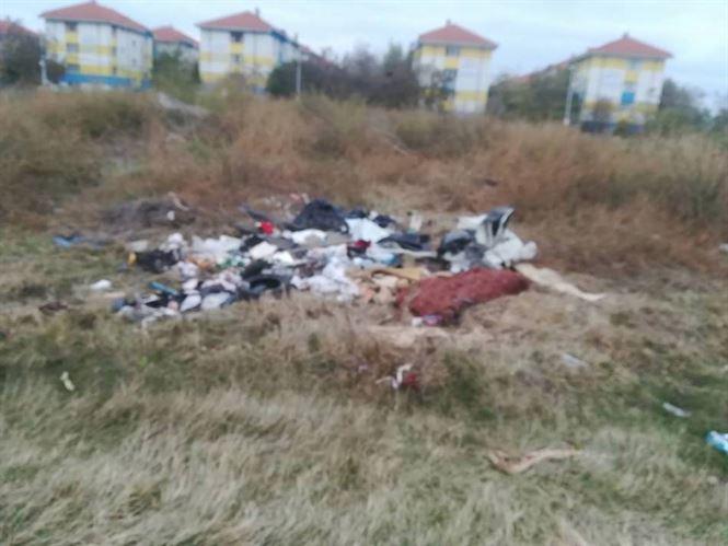 Sancțiuni aplicate de Poliția Locală pentru depozitarea gunoaielor pe domeniul public