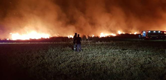 Incendiu de vegetatie in comuna Tudor Vladimirescu