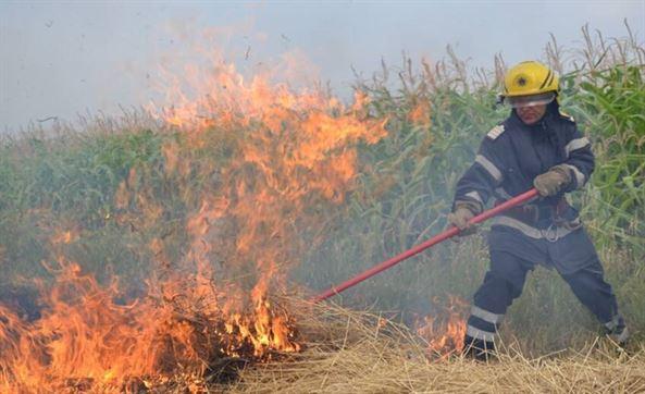 Incendiu de vegetație în zona Cazasu stins după aproape 7 ore