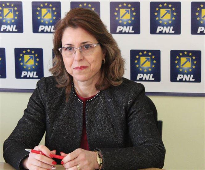 Senatul a respins inițiativa legislativă a deputatului PNL Antoneta Ioniță