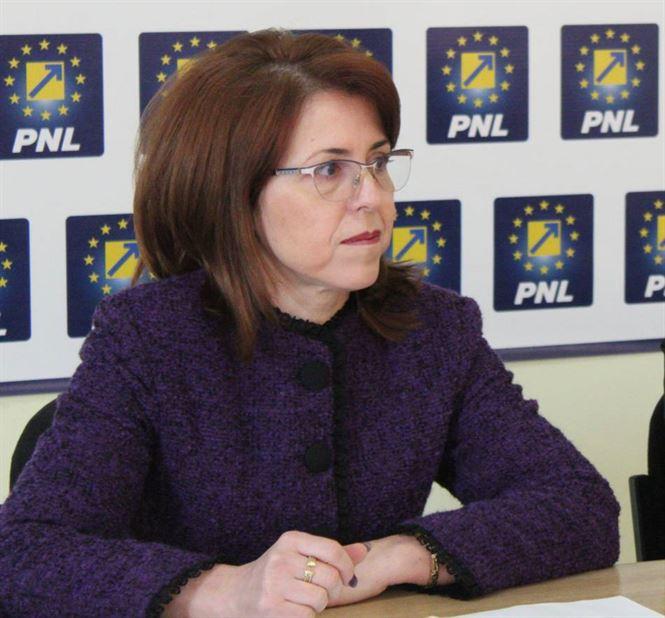 """Antoneta Ioniță: """"Avem două Românii. Cum procedăm?"""""""