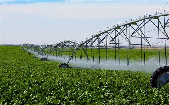 Termen limita pentru agricultorii ecologici