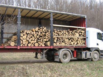 Orice transport de lemn, urmarit cu ajutorul unui soft