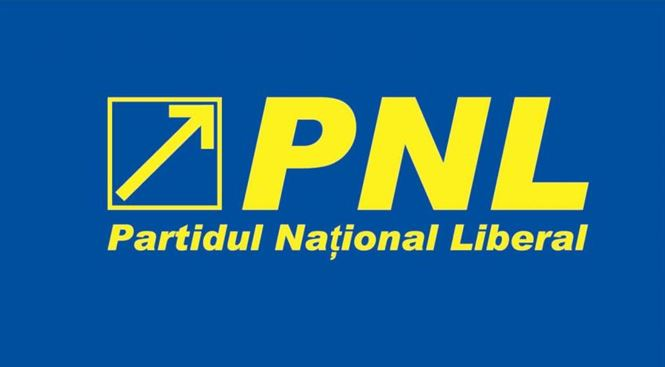 Braila are candidat la europarlamentare