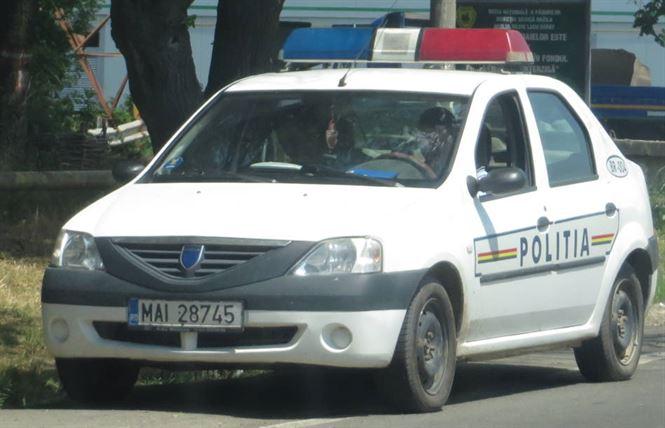 Acțiuni ale polițiștilor în localitățile din Insula Mare