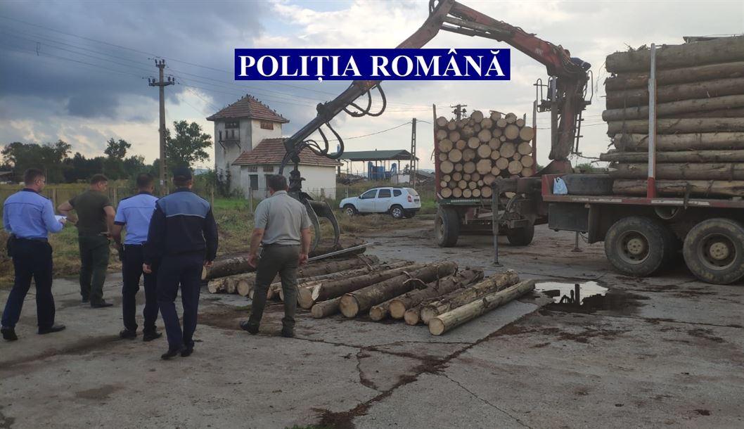 Acțiune pe linia combaterii faptelor ilegale din domeniul forestier