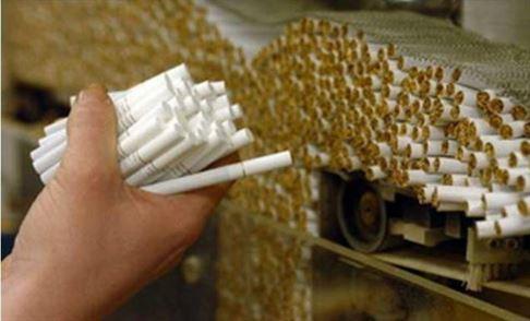 Video: Peste o tonă de tutun și 13 mașini artizanale de fabricat țigarete ridicate în urma perchezițiilor